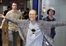 Liu Xia Freed