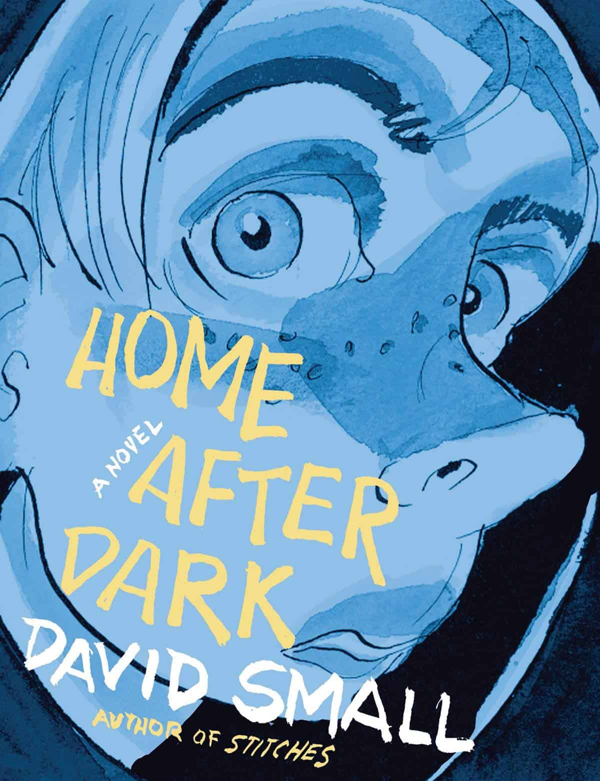 Home After Dark by David Small