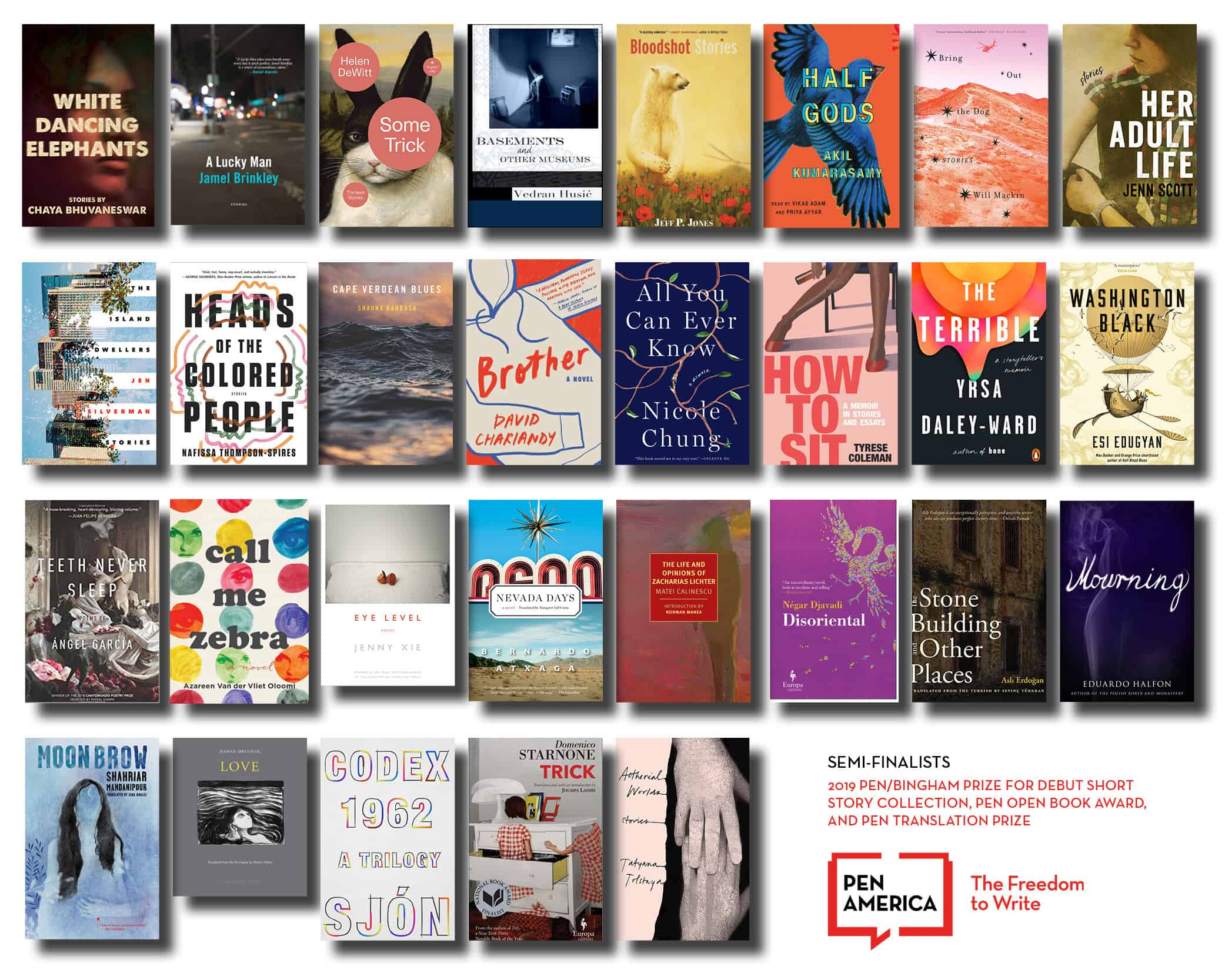 Announcing The 2019 Pen America Literary Awards Longlists by PEN America
