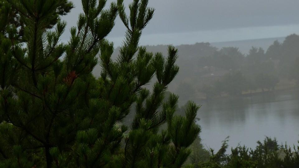 Pacific Northwest Photo