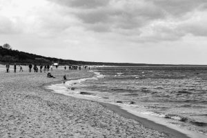 black and white photo of a beach