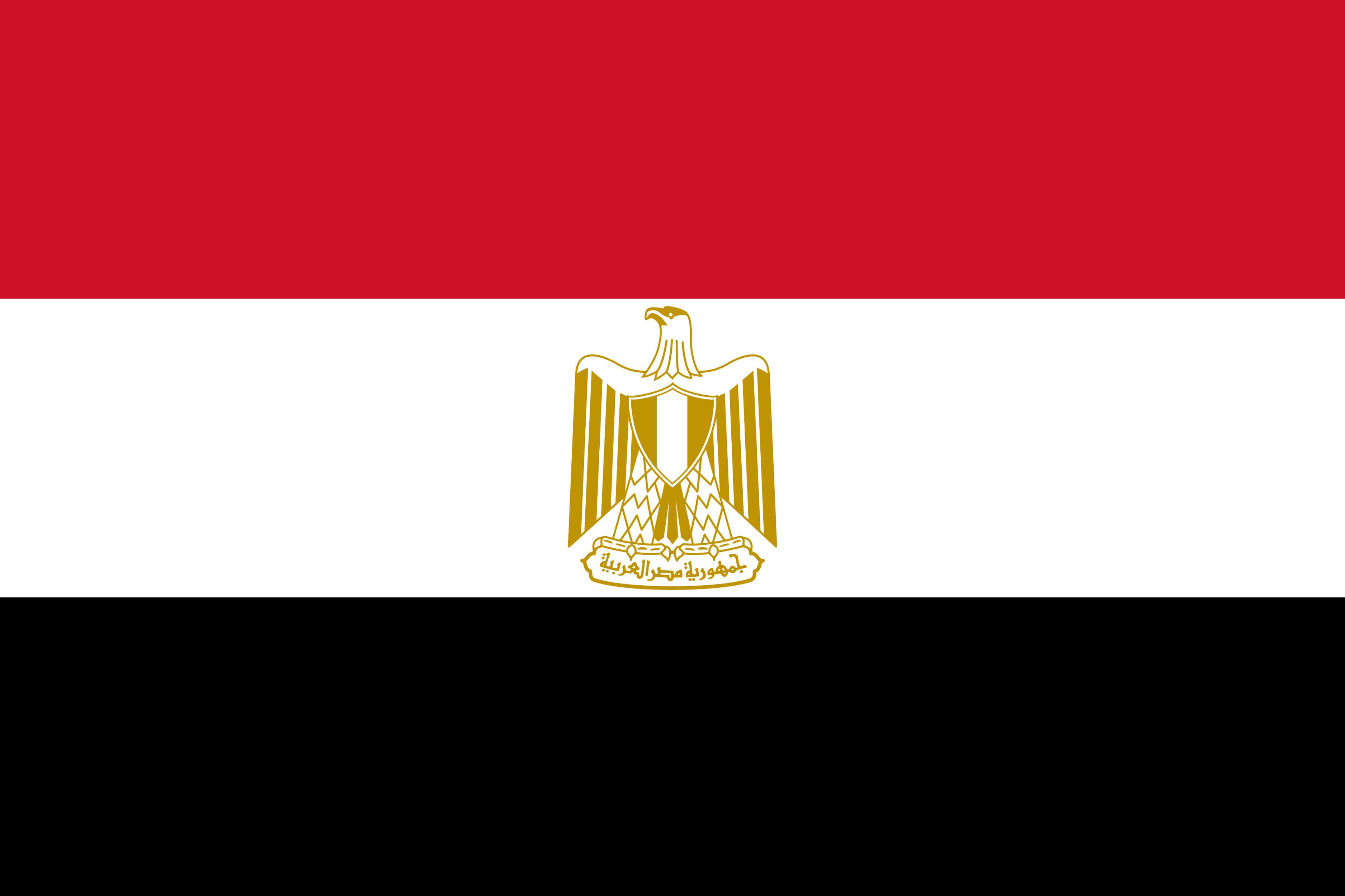 Egypt Going to Extreme Lengths to Quash Dissent, Imprisoning Writers as Part of Broader Crackdown