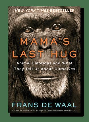 Frans de Waal, Mama's Last Hug