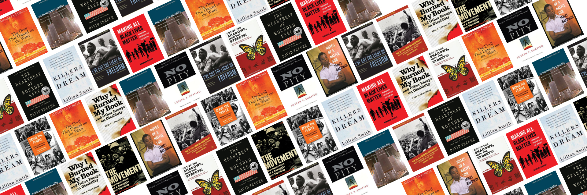 Books of Protest Reading List Book Covers