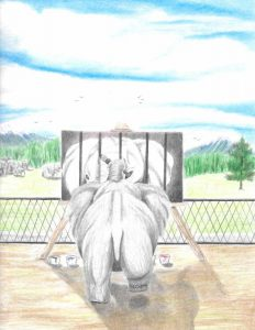 An elephant behind a fence, separated from a herd of elephants in a natural scene, paints an image of itself behind bars with its trunk