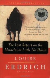 Louise Erdrich - The Last Report book cover