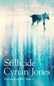 Stillcide book cover