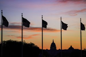 Flags in front of the U.S. capitol