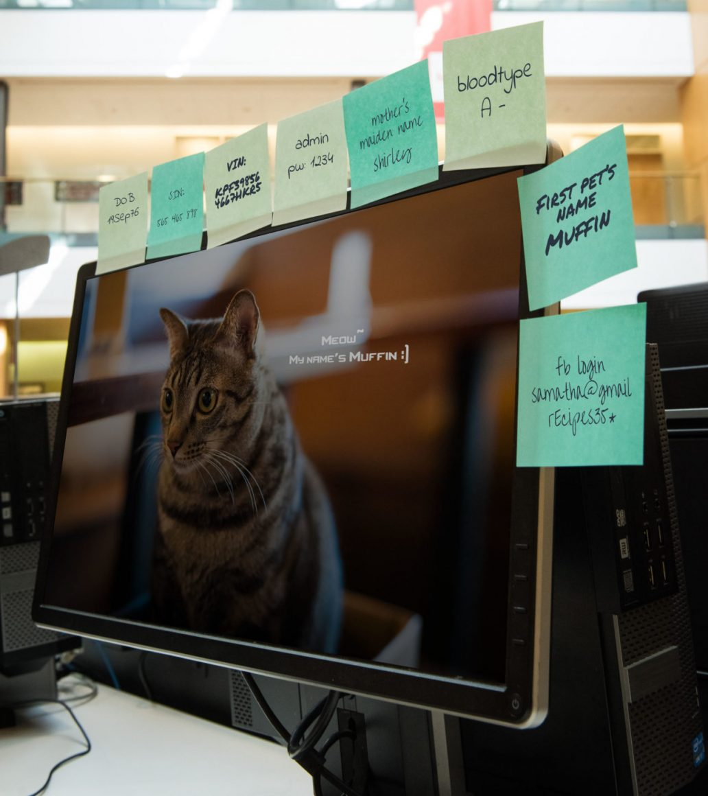 A computer screen is surrounded by post it notes that have computer passwords and safety question answers scribbled on them.