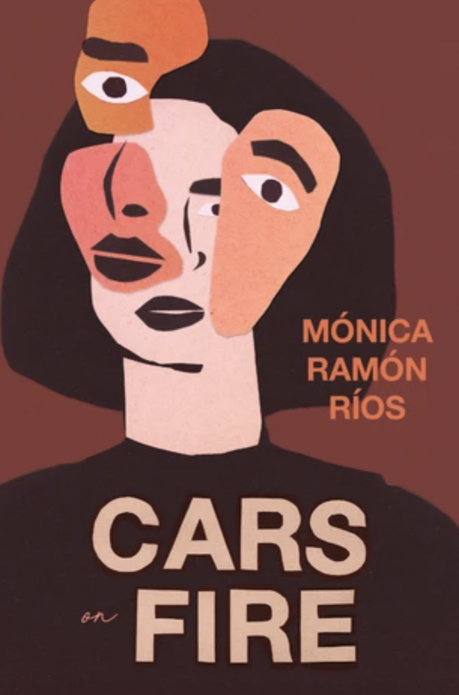 Cars on Fire book cover