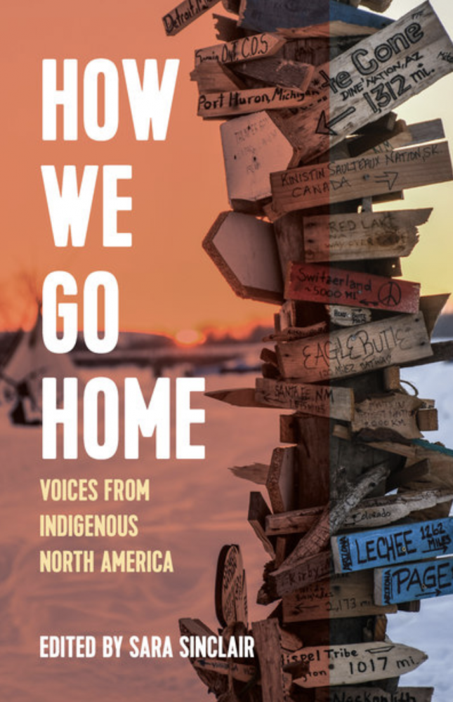 How We Go Home book cover