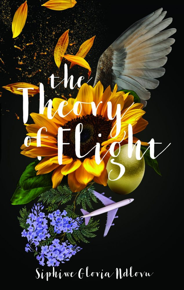 The Theory of Flight book cover