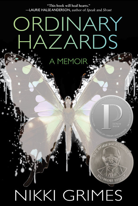 Ordinary Hazards book cover