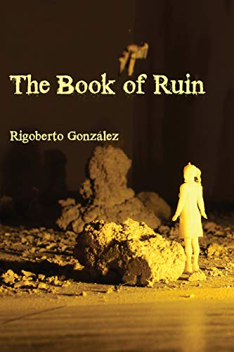 The Book of Ruin book cover